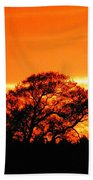 Blazing Oak Tree Beach Towel