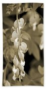 Bleeding Hearts In Sepia Beach Towel