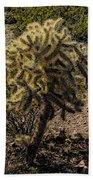 Blondie Wezbo Beach Towel