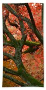 Blood Red Autumn Tree Beach Towel