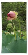 Bloom Among The Pods Beach Towel