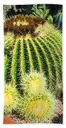Blooming Cactus Two Beach Towel