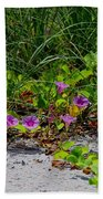 Blooming Cross Vines Along The Beach Beach Towel