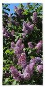 Blooming Lilacs Beach Towel