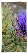 Blooming Purple Teasel Beach Towel
