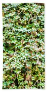 Blooming Shrubs  Beach Towel
