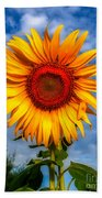 Blooming Sunflower  Beach Towel