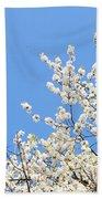 Blooming Tree Beach Towel