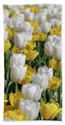Blooming Tulips As Far As The Eye Can See Beach Towel