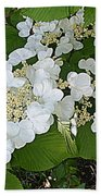 Blossom Sunbath  Beach Towel