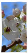 Blossom Time Beach Towel