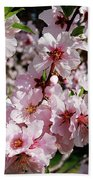 Blossoming Almond Branch Beach Towel