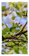 Blossoms And Leaves Beach Towel
