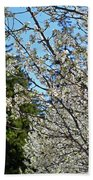Blossoms And The Bard Beach Towel
