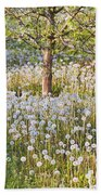 Blossoms Growing In A Fruit Orchard In Beach Towel