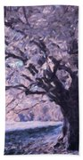 Blossoms In Winter Beach Towel
