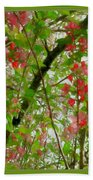 Blossoms Of Spring Time Beach Towel