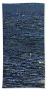 Blowing In The Wind Beach Towel by David Lee Thompson