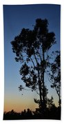 Blue And Gold Sunset Tree Silhouette I Beach Towel