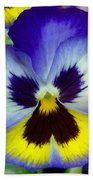Blue And Yellow Pansy Beach Towel