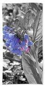 Blue Bell Flower Beach Towel