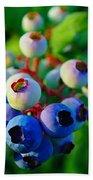 Blue Berries  Beach Towel
