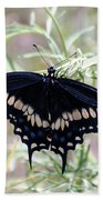 Blue Black Swallowtail Beach Towel