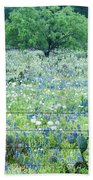 Blue Bonnets,poppies And Willow Tree 2 Beach Towel