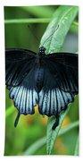 Blue Butterfly II Beach Towel