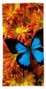 Blue Butterfly On Mums Beach Sheet