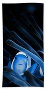 Blue Clownfish Big Size 15x11 - Beach House Art Beach Towel