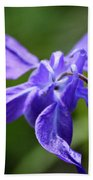 Blue Columbine Beach Towel