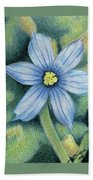 Blue Eyed Grass - 1 Beach Towel