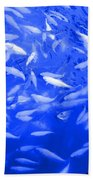 Blue Fish Abstract Beach Towel