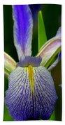 Blue Flag Iris Beach Towel