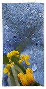 Blue Spring Flower Beach Towel