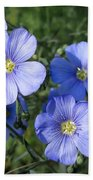 Blue Flowers In The Sun Beach Towel