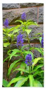 Blue Ginger At The Wall Beach Towel