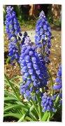 Blue Grape Hyacinth Beach Towel