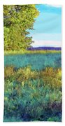 Blue Grass Sunny Day Beach Towel