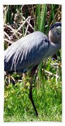Blue Heron With Lunch Beach Towel
