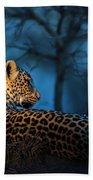 Blue Hour Leopard Beach Towel