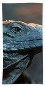 Blue Iguana Beach Towel