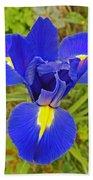 Blue Iris Beauty Beach Towel