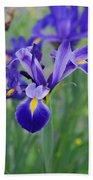 Blue Iris Flower Beach Towel