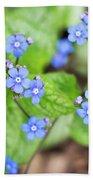 Blue Jack Frost Flowers Beach Towel