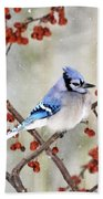 Blue Jay In Snowfall 3 Beach Towel