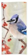 Blue Jay In Snowfall Beach Towel