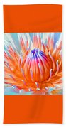 Blue Orange Lily Beach Towel