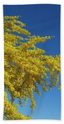 Blue Palo Verde Tree-signed-#2343 Beach Sheet
